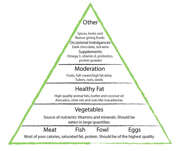 Paleo Diet Plan, What Is It?